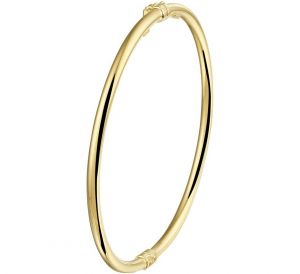 Bangle scharnier ronde buis 3 x 60 mm - PSN5000183