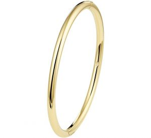 Bangle scharnier massief ovale buis 4 x 60 mm - PSN5000186
